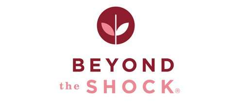 beyond-the-shock